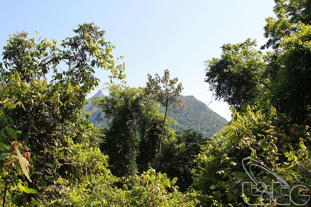 Vườn quốc gia Phong Nha - Kẻ Bàng - Tác giả: Bùi Huy Hoàng