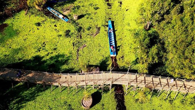 An Giang: Ngỡ ngàng chiếc cầu tre dài nhất Việt Nam nằm giữa rừng tràm